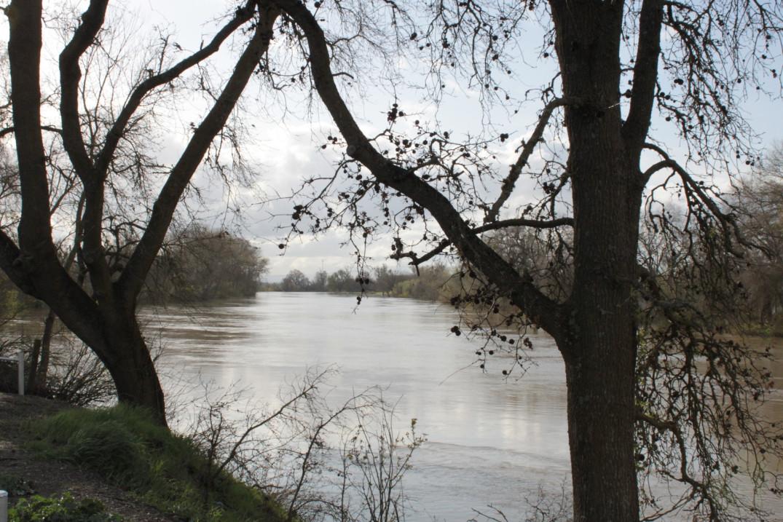 sacramento-river-at-the-fremont-weir-mar-2011-2