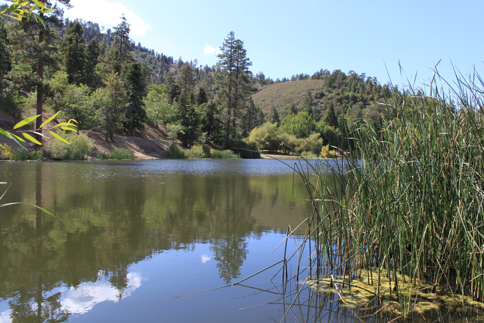 Features of the san andreas fault near wrightwood maven for Lake fishing near los angeles