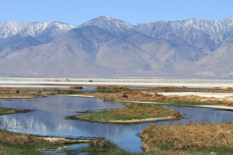 Owens Lake at Sulfate Well Apr 2012 #3