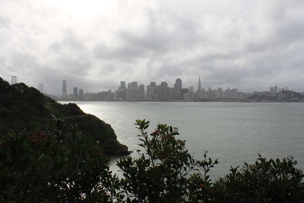 San Francisco from Treasure Island Dec 2012 #4