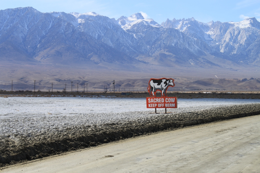 Owens Lake dust control project #200