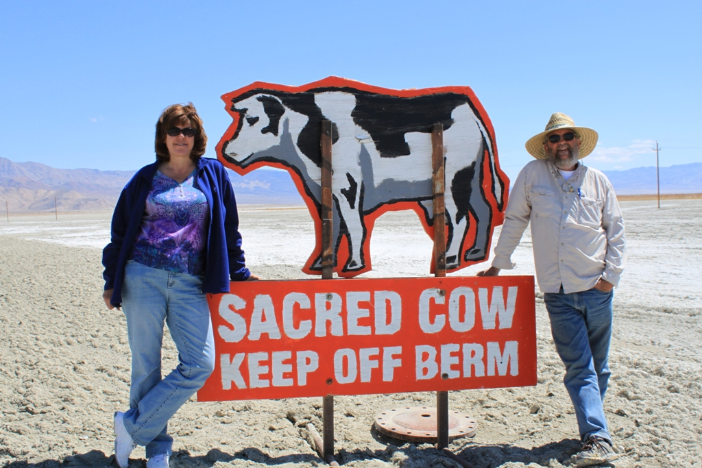 Owens Lake sacred cow Apr 2012 #5 with Michael Prather