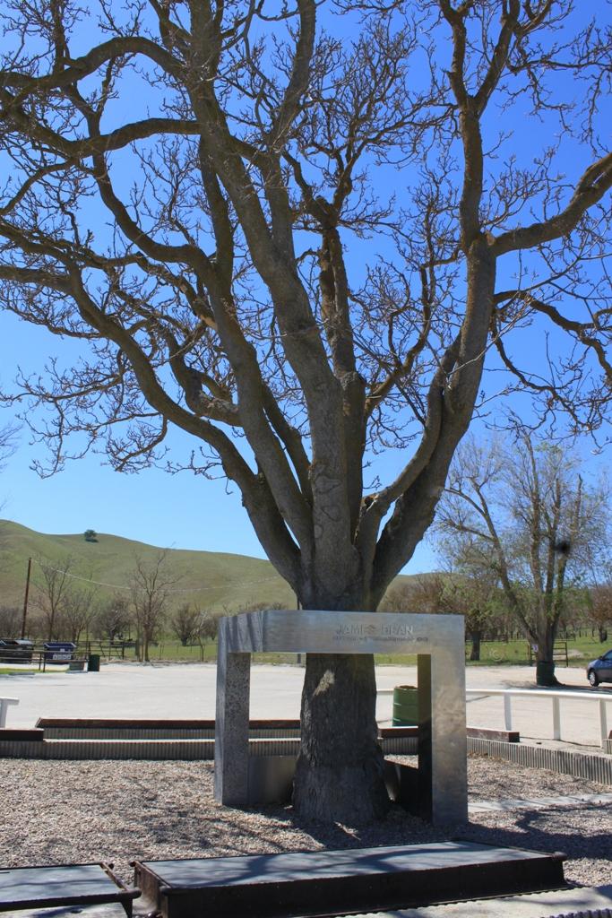 James Dean Memorial Apr 2012 #5