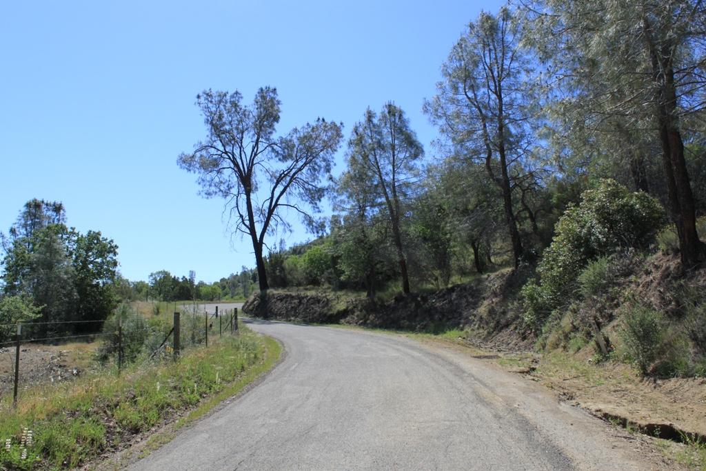 Parkfield-Coalinga Road Apr 2012 #11