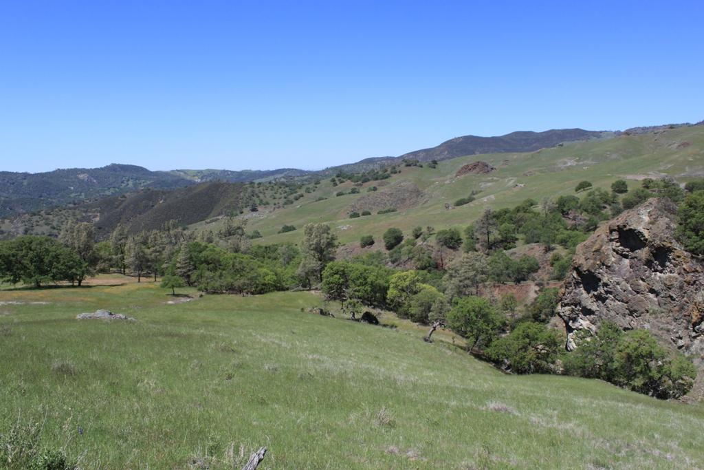 Parkfield-Coalinga Road Apr 2012 #77