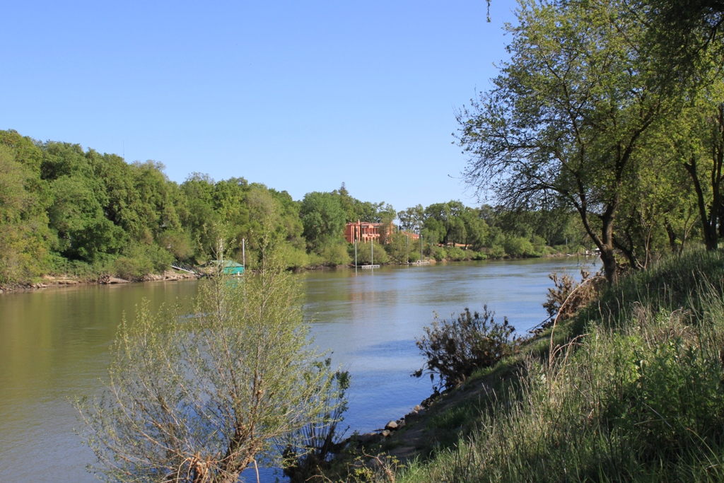 Sacramento River Garden Highway Apr 2013 #12