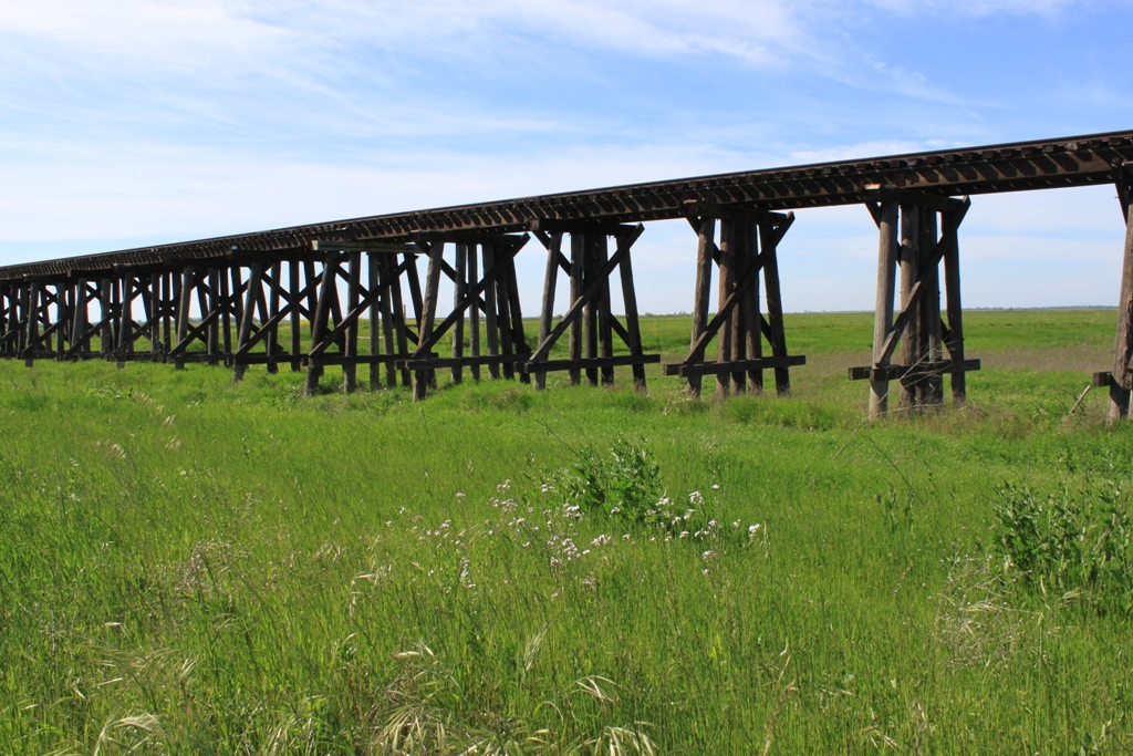 Train trestle - Sacramento Valley Apr 2013 #1