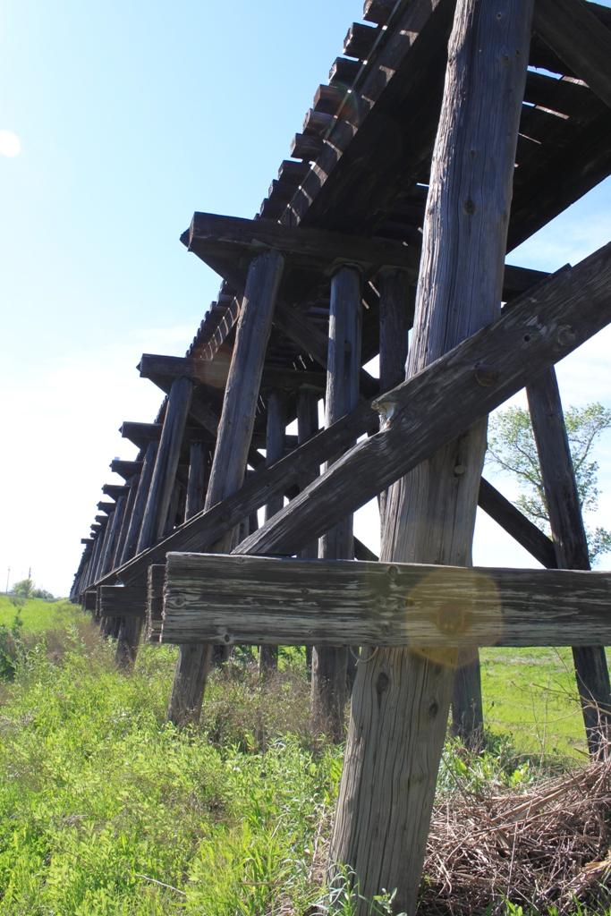 Train trestle - Sacramento Valley Apr 2013 #5