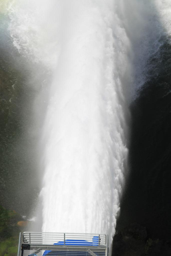 Morris Dam July 2013 #9