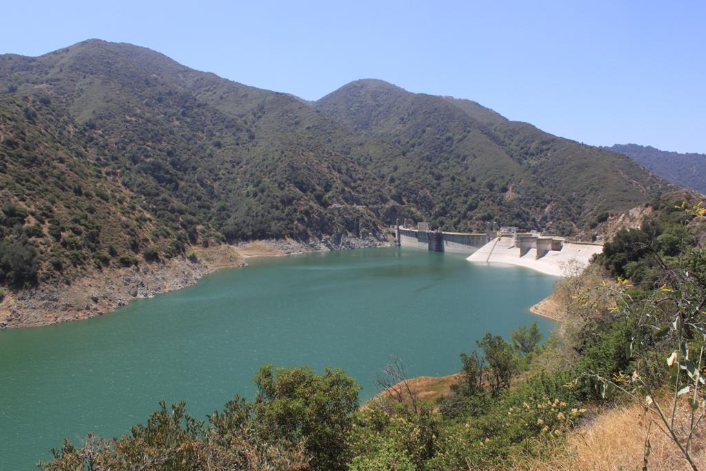 Morris Dam June 2012 #16