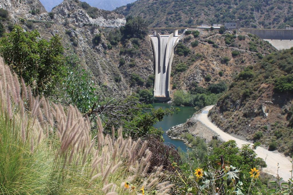 Morris Dam June 2012 #3