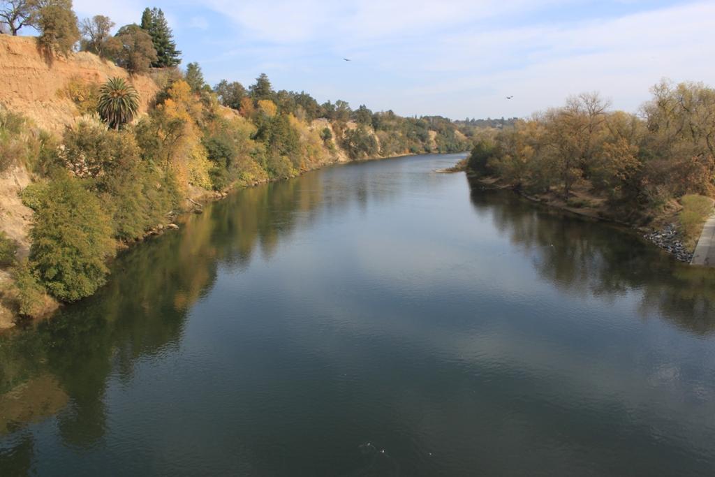 American River Nov 2013 #14