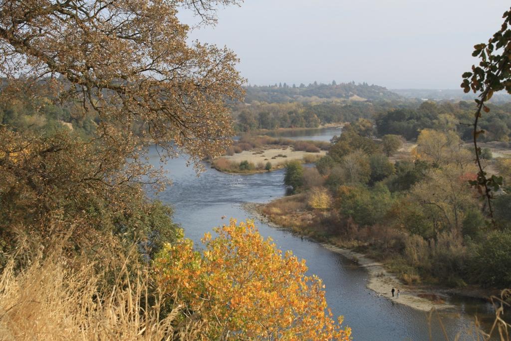 American River Nov 2013 #30
