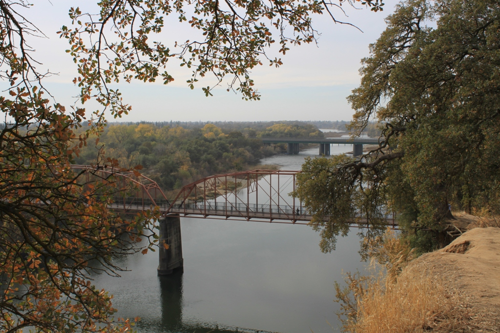 American River Nov 2013 #33
