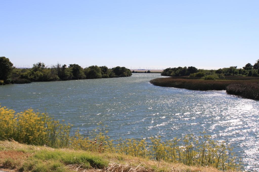 Delta waterways July 2013 nice