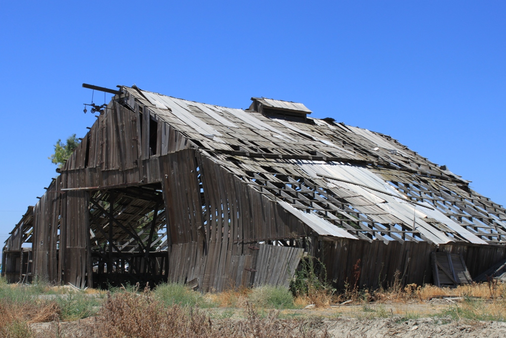Old barn, Central Valley, July 2013 #3
