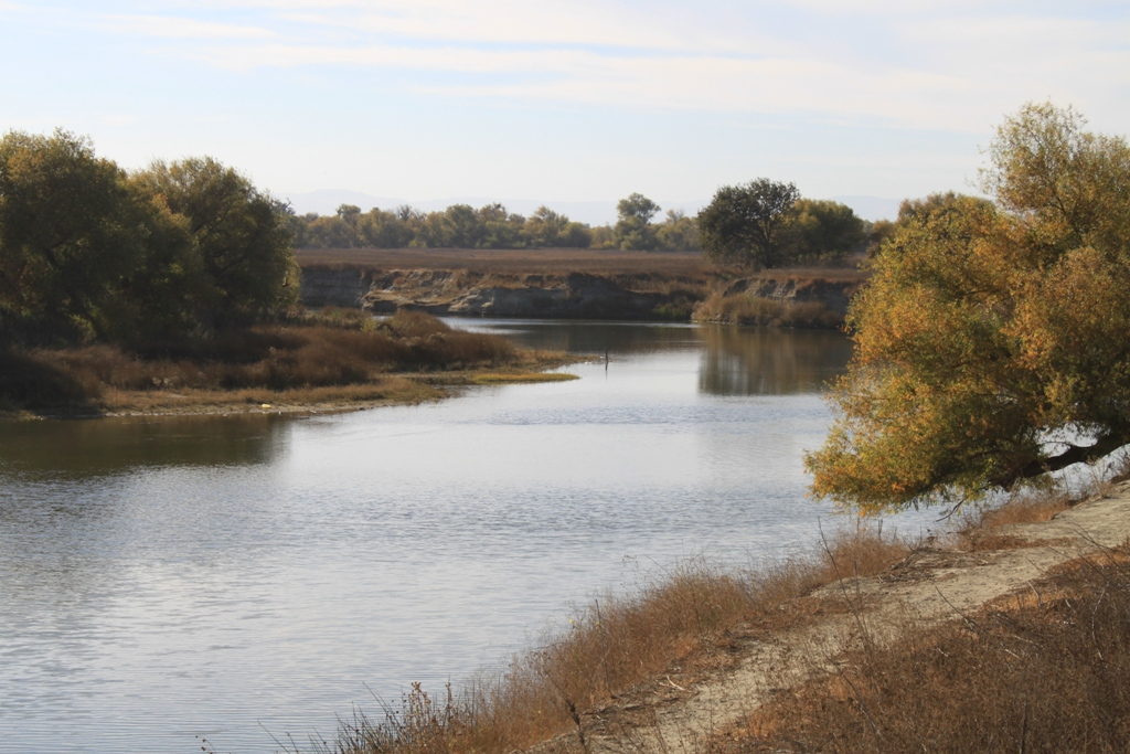 San Joaquin River Nov 2013 #2