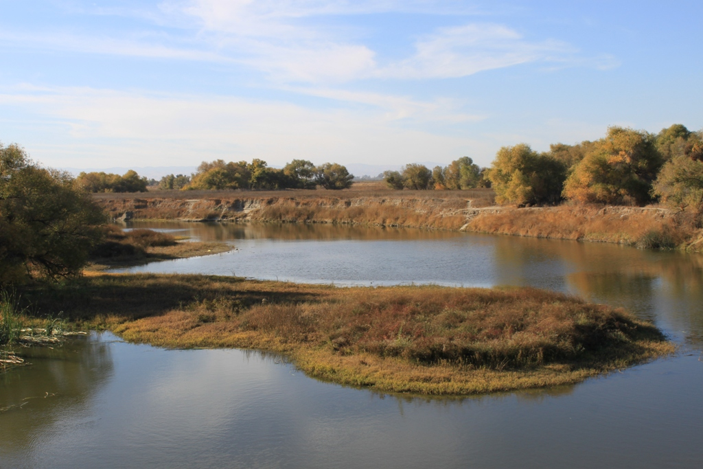 San Joaquin River Nov 2013 #6