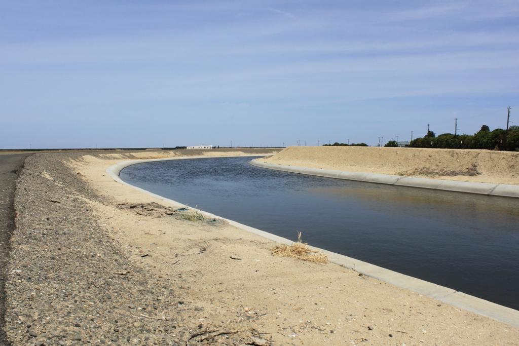 Berrenda Mesa Canal May 2014 #2