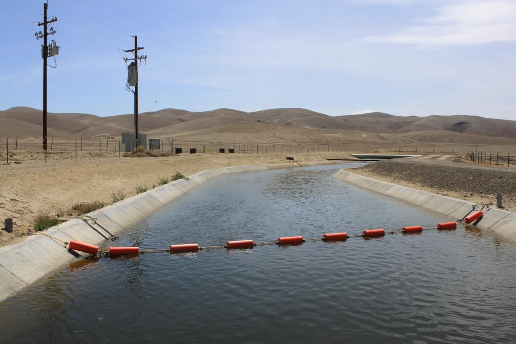 Berrenda Mesa Canal May 2014 #6