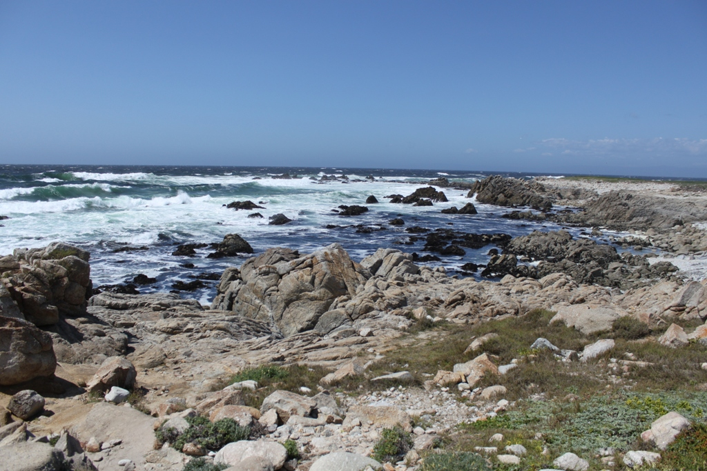 Monterey 17 Mile Drive  May 2014 #13