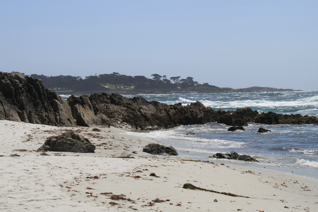Monterey 17 Mile Drive  May 2014 #22