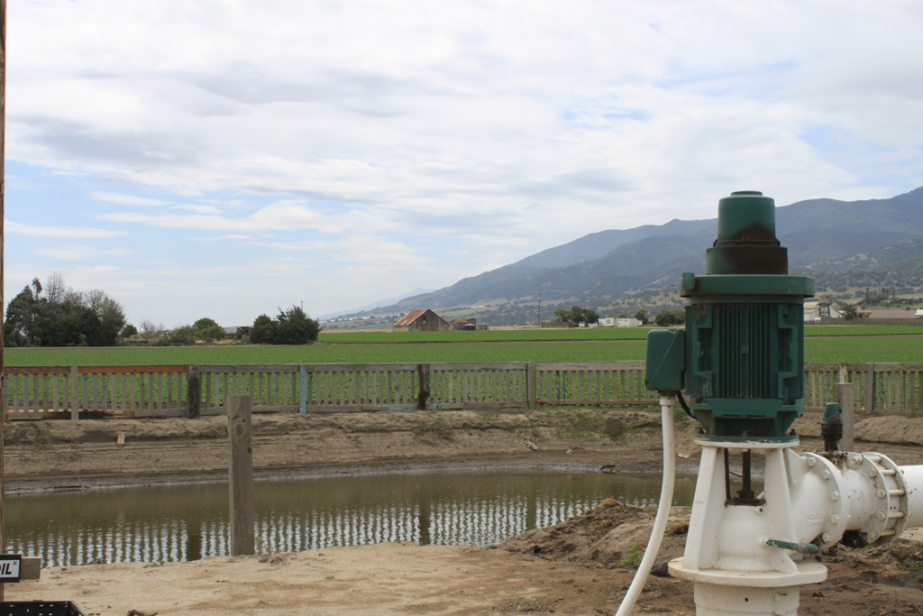 Salinas Valley agriculture May 2014 #23