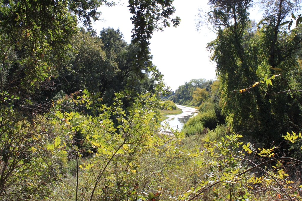 Fremont Weir - abandoned farm Oct 2013 #2