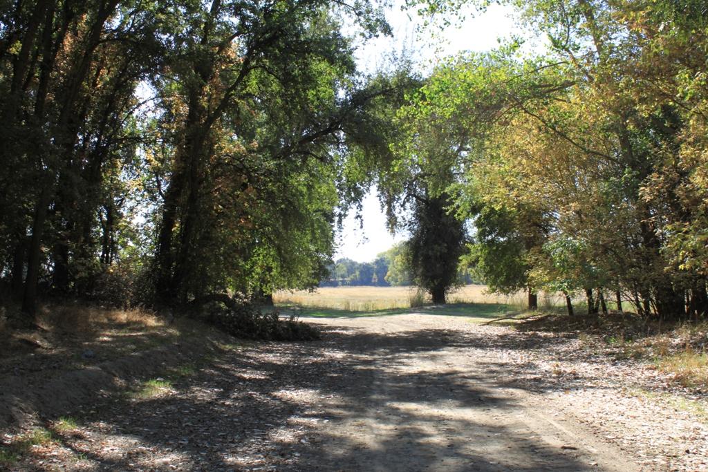 Fremont Weir - dry Oct 2013 #14