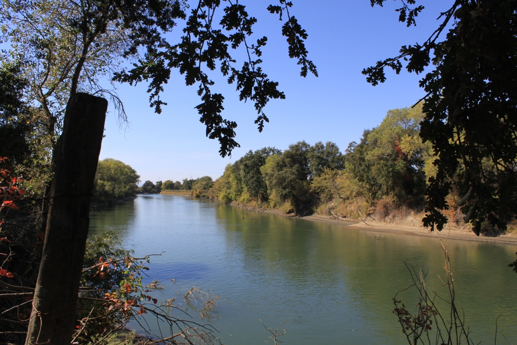 Sacramento River at the Fremont Weir - Oct 2013 #2