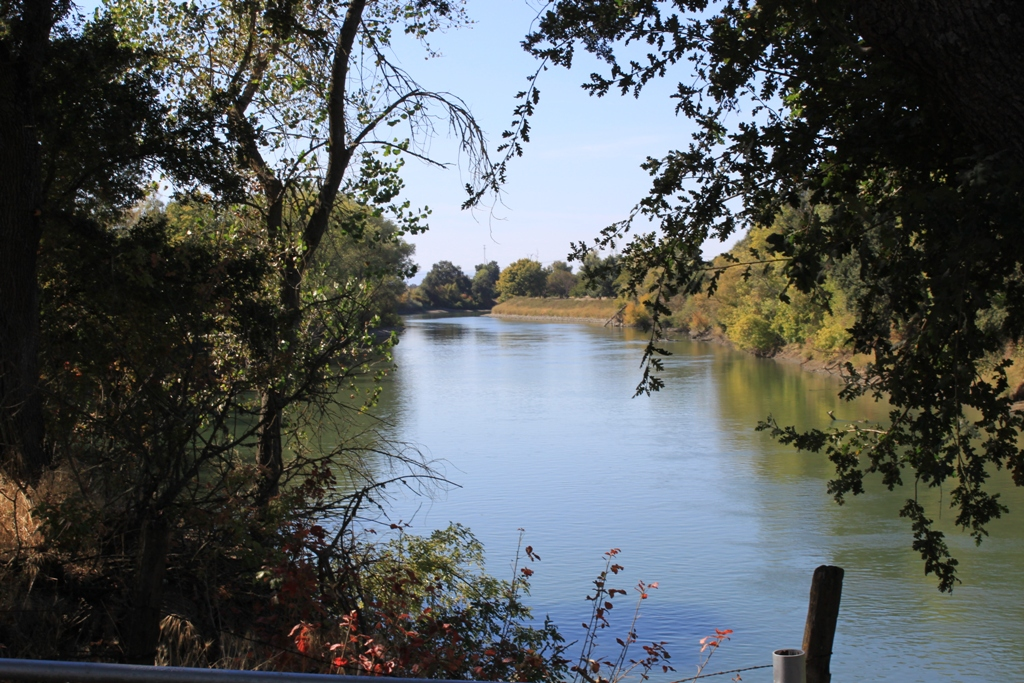 Sacramento River at the Fremont Weir - Oct 2013 #4