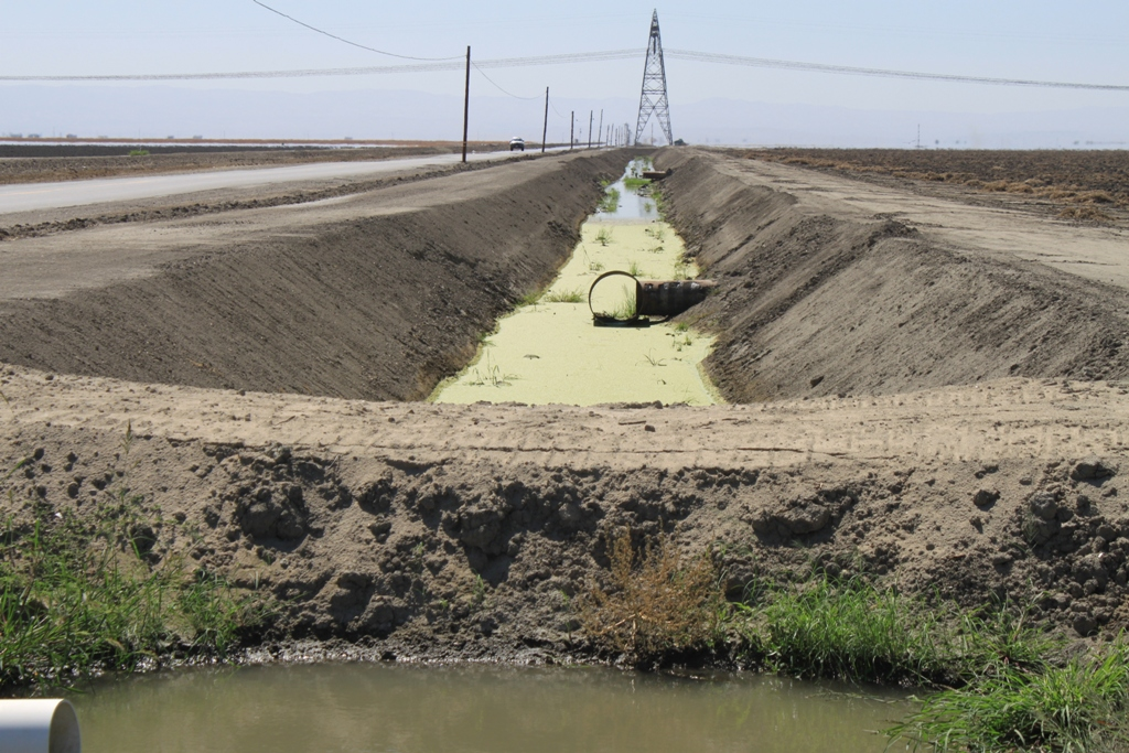 5 Algae filled canal Kern County