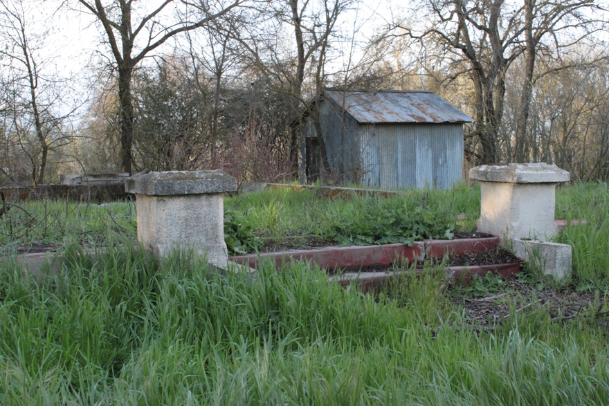Abandoned house at Fremont Weir #1 Mar 2011