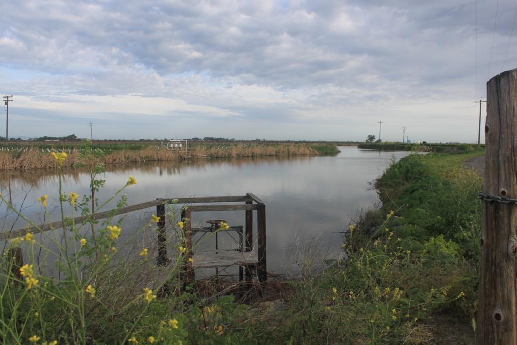 Irrigation gate Apr 2014 #5