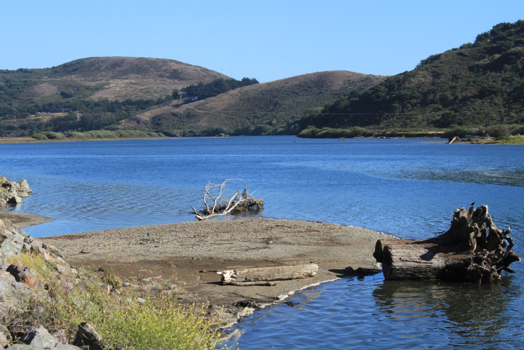 Russian River at Jenner Aug 2015 #4
