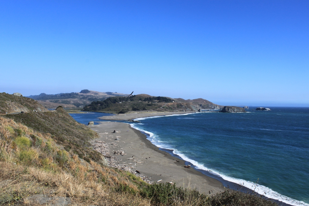 Russian River meets the Pacific Aug 2015 #1