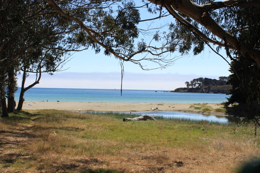 San Simeon Beach Aug 2013 #13