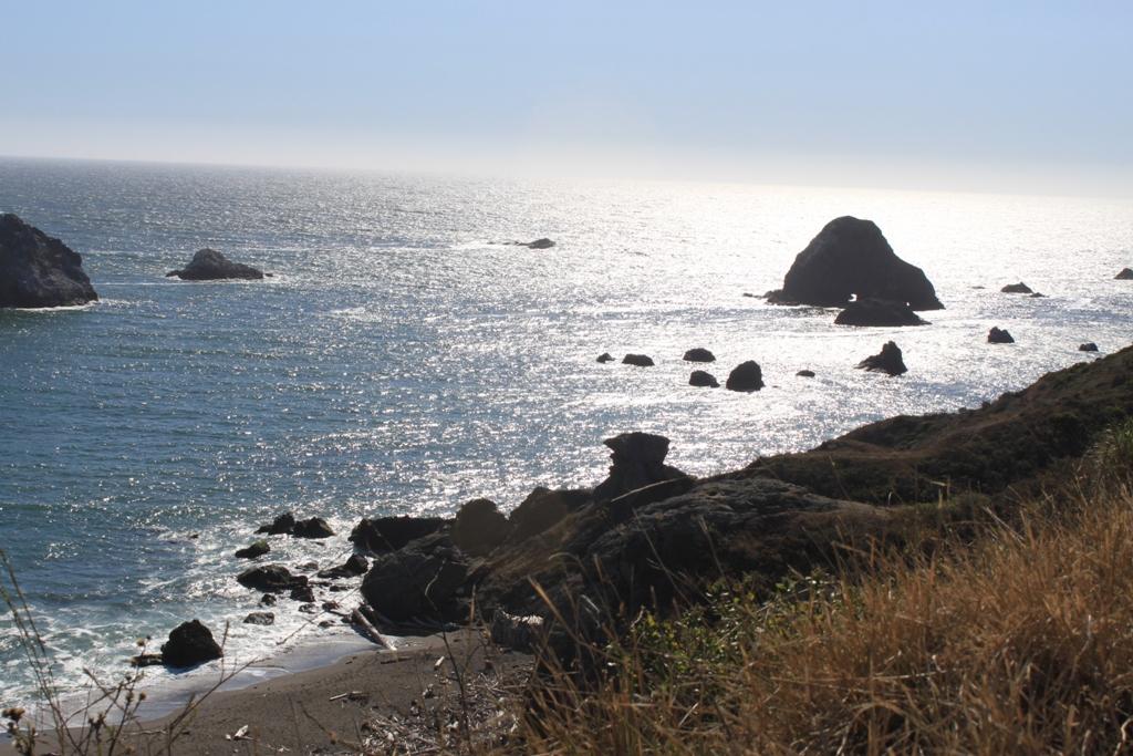Sonoma Coast Aug 2015 #22