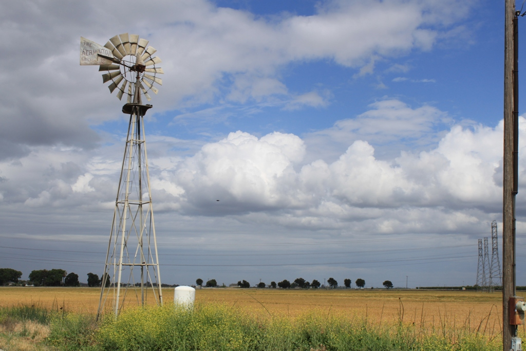 Windmill in the Delta May 2015 #2