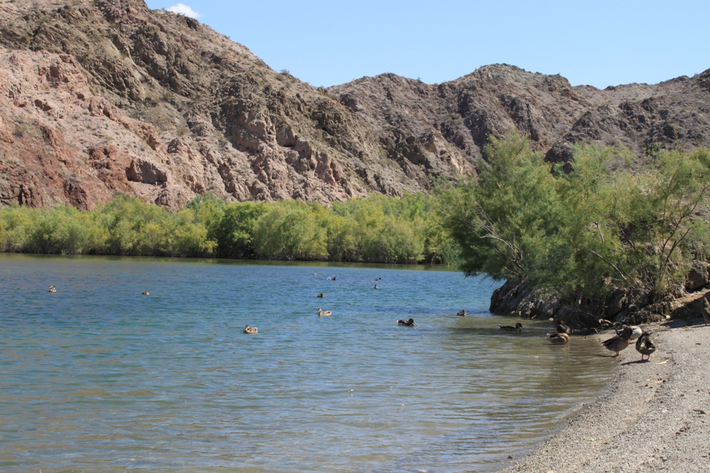 Colorado River, Laughlin Area #3