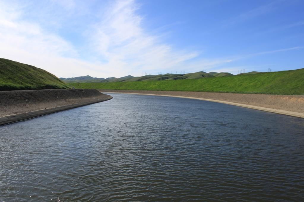 Delta Mendota Canal Mar 2013 #2
