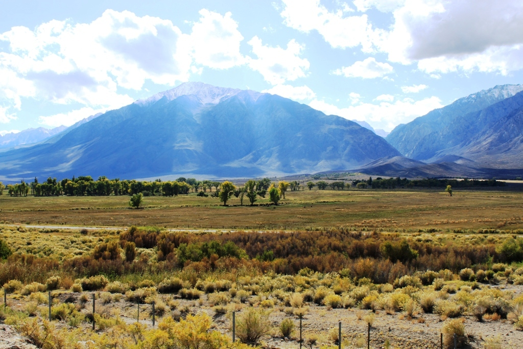 Owens Valley Oct 2015 #6