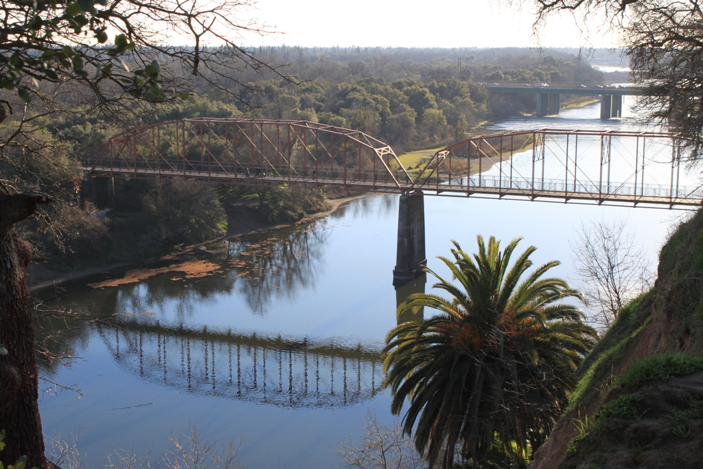 American River at Fair Oaks Bridge Jan 2016 #13