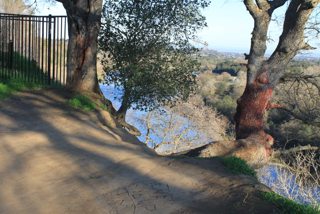 American River at Fair Oaks Bridge Jan 2016 #15