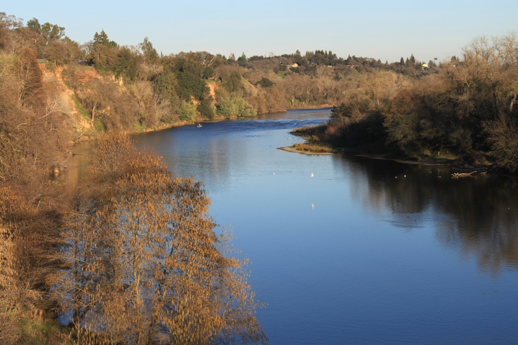 American River at Fair Oaks Bridge Jan 2016 #20