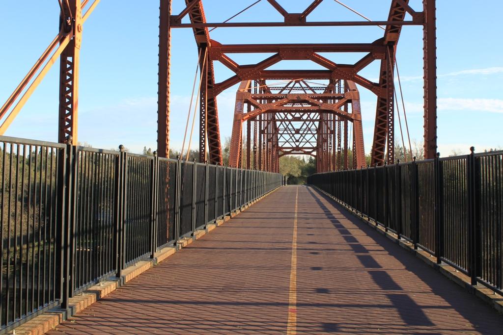 American River at Fair Oaks Bridge Jan 2016 #21