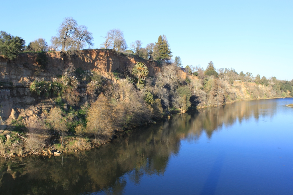 American River at Fair Oaks Bridge Jan 2016 #22