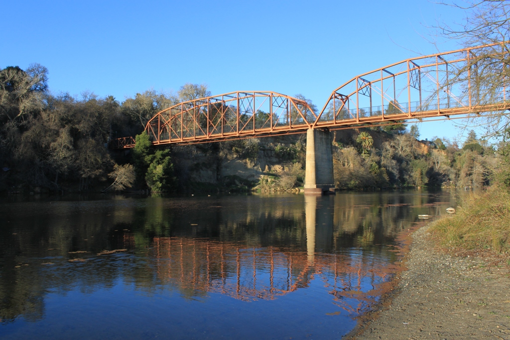 American River at Fair Oaks Bridge Jan 2016 #27