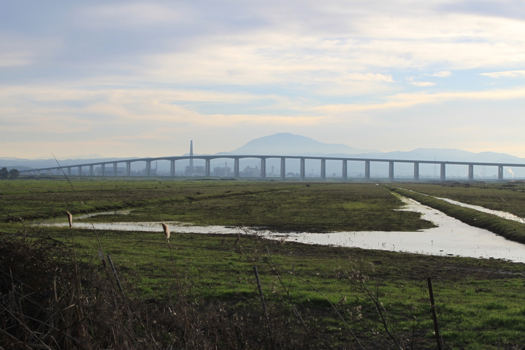 Antioch Bridge Feb 2016 #1